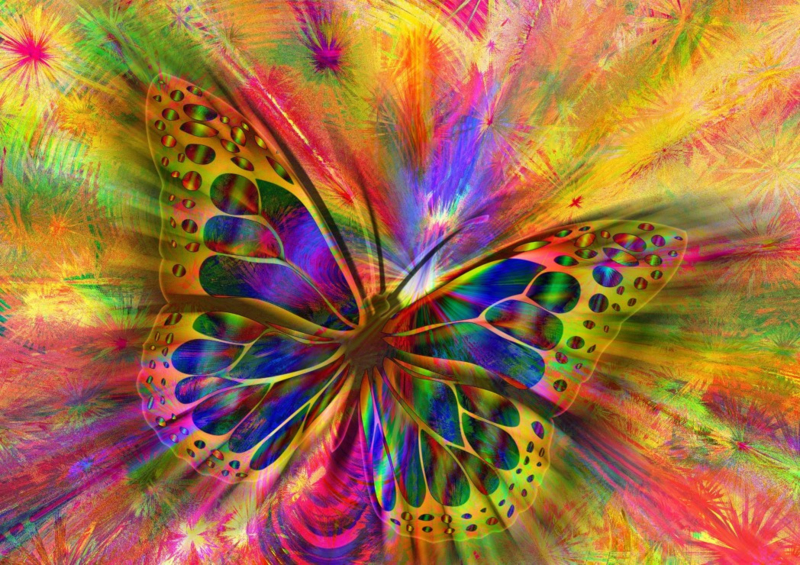 Bluebird - Colorful Butterfly - 1500 stukjes