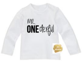 Shirt mr onederful