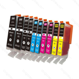 Huismerk PGi-550XL / CLi-551XL 10 pack met chip