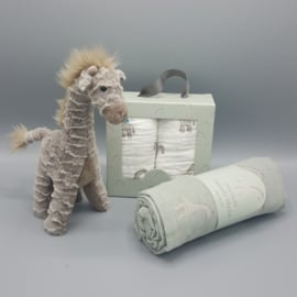 Jellycat  Knuffel - Little Joey Giraffe