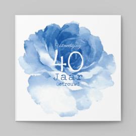 Blauwe pioenroos   40 jaar