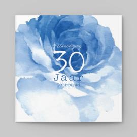 Blauwe pioenroos | 30 jaar
