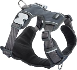 Padded Harness