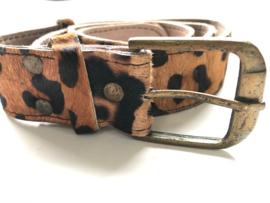 Animal belt