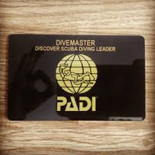 PADI DSD Leader per keer