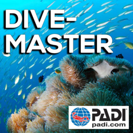 PADI Divemaster inclusief theorie, 10 daagse
