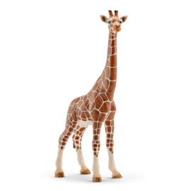 Schleich : Wild Life Giraffe (V) - 14750