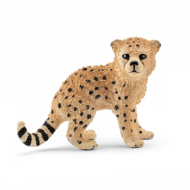 Schleich : Wild Life Cheetah Welp - 14747