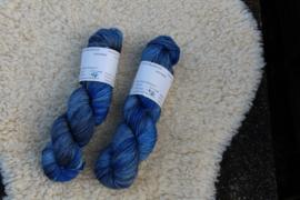 BlauwGrijzen met Blauw