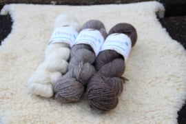 West Yorkshire Spinners BlueFaced Leicester DK