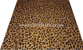 OMG! Leopard double spots!