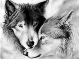Full Diamond Painting  wolven  30 x 40  cm