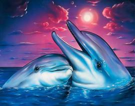 Full Diamond painting  dolfijnen 40 x 50 cm