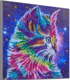 Speciale Painting  gekleurde kat 25 x 25 cm