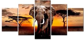 Full diamond painting olifant vijfluik
