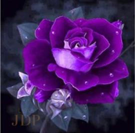 Full diamond painting paarse roos 25 x 25 cm