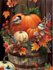 Full Diamond Painting Halloween; herfst; pompoenen 40 x 50 cm