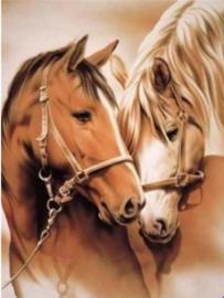 Full Diamond painting paarden 30 x 40 cm