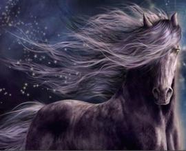 Full Diamond painting paard 30 x 40 cm