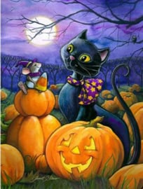 Full diamond painting Halloween met kat en muis 30 x 40 cm