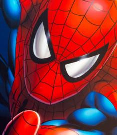 Full Diamond painting Spiderman 20 x 25 cm