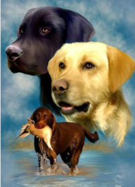 Full diamond painting Labradors 30 x 40 cm