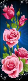 Full diamond painting rozen 20 x 60 cm