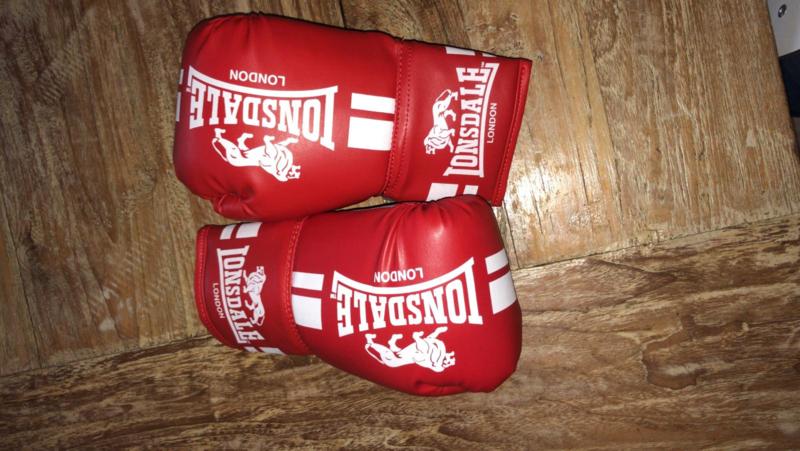 Junior bokshandschoenen
