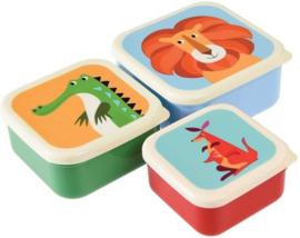 Set van drie bakjes Colourful Creatures