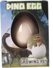 Dino groei ei
