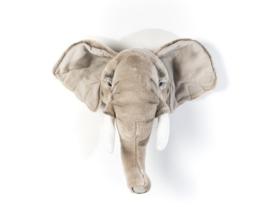 Wild & Soft olifant George