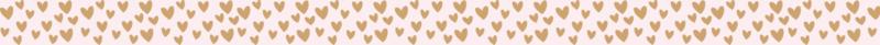 Elastiek Hearts voor Notitieboek | Per 5 stuks