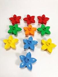 Zakje met 10 bloemetjes willekeurige kleuren