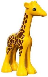 Duplo dieren : baby Giraffe