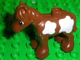 Duplo paard veulen bruin met witte stippen
