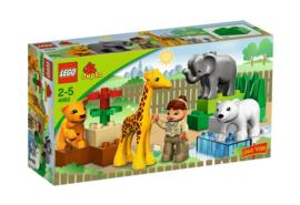 Duplo baby dierentuin 4962 met doos