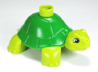 Duplo schildpad