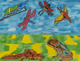 Lucht- en waterdieren