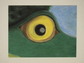 Detail van een kikker