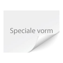 sticker speciale vorm,  max 5x5cm