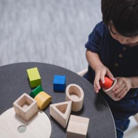 Geo vormen  - Plan Toys