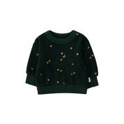 Baby Sweatshirt - Sky - Tinycottons