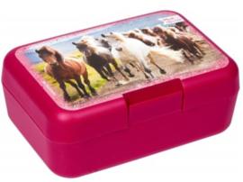 Paarden lunchbox  | roze wilde paarden