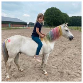 Maak van je pony een unicorn!