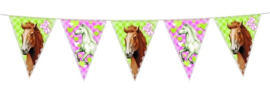 Paarden slinger vlaggetjes | 6 meter