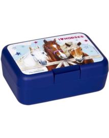 Lunchbox Paardenvrienden Blauw