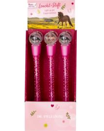 Paarden pen met lampje