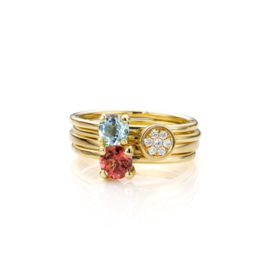 Stapel Blauw en Roze | 4 ringen