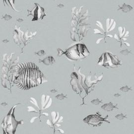 Black&White Fish wallpaper