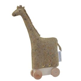 Woodlane Zoo, Giraffe